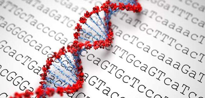 Sigilo do doador de material genético